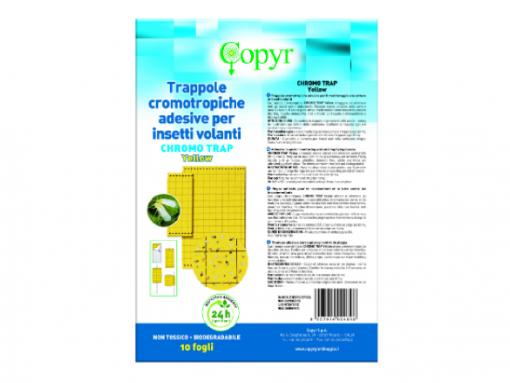 Chromo Trap Yellow - 10 Trappole