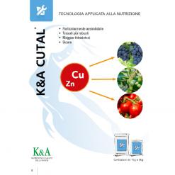 K&A Cutal lt.1