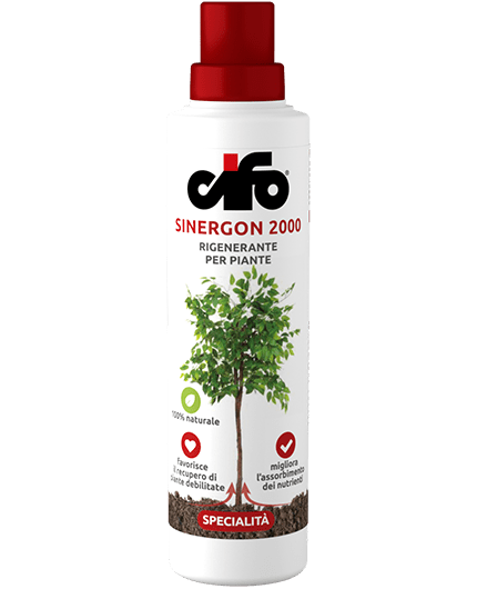 Sinergon 2000 ml.500
