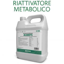 Always biostimolante lt.1