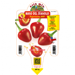 Peperoncino Pancho Naso del Diavolo - vaso 14