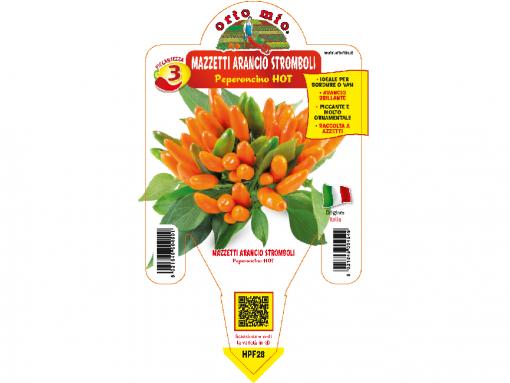 Peperoncino mazetti arancio Stromboli - vaso 14