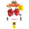 Peperoncino Habanero rosso - vaso 14