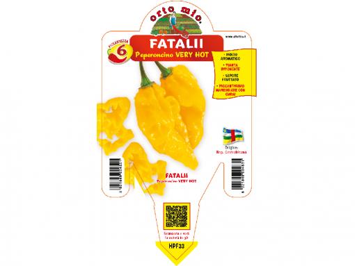 Peperoncino Fatalii - vaso 14