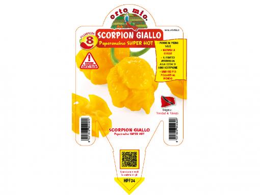 Peperoncino Scorpion giallo - vaso 14