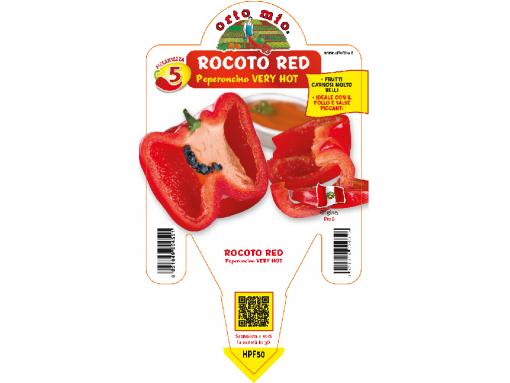 Peperoncino Rocoto - vaso 14