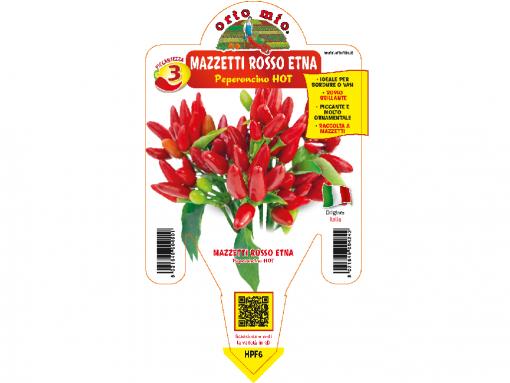 Peperoncino mazzetti rosso etna - vaso 14