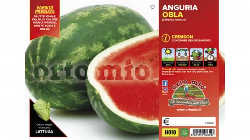 Piantine in pack Anguria Crimson Sweet varietà Obla F1