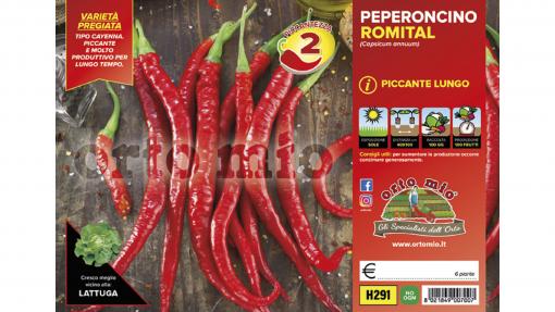 Piantine in pack Peperone piccante lungo varietà Romital F1