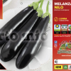 Piantine in pack Melanzana lunga nera varietà Nilo F1