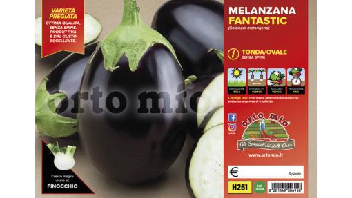 Piantine in pack Melanzana tonda ovale nera varietà Fantastic F1