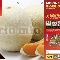 Piantine in pack di Melone retato senza fetta varietà Giorgio F1