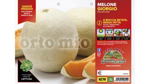 Piantine in pack di Melone retato senza fetta variet? Giorgio F1
