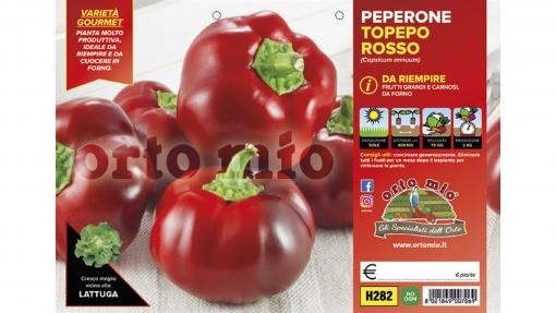 Piantine in pack Peperone da riempire Topepo variet? Indus F1