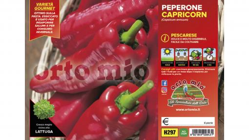 Piantine in pack Peperonce corno pescarese varietà Capricorn F1
