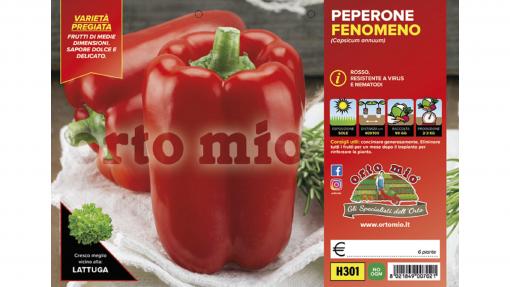 Piantine in pack Peperone rosso variet? Fenomeno F1