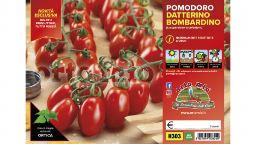 Piantine in pack Pomodoro Datterino Bombardino F1