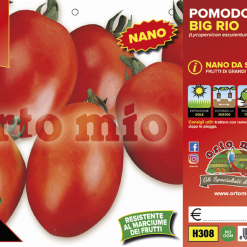 Piantine in pack Pomodoro nano ovale variet? Big Rio F1
