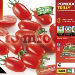 Piantine in pack Pomodoro Datterino variet? Trilly F1