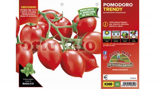 Piantine in pack Pomodoro Vesuviano varietà Trendy F1