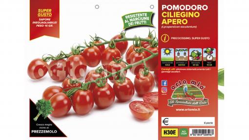 Piantine in pack Pomodoro ciliegino varietà Apero F1