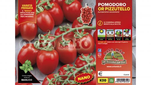 Piantine in pack Pomodoro nano da appendere Pizzutello varietà Penny F1