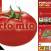 Piantine in pack Pomodoro tondo da mensa variet? Optima F1