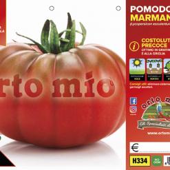 Piantine in pack Pomodoro Marmande pecoce varietà Marmyto F1