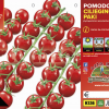 Piantine in pack Pomodoro ciliegia varietà Paki F1
