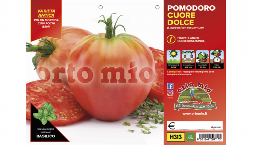 Piantine in pack Pomodoro cuore classico variet? Cuoredolce F1