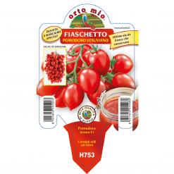 Piantine in vaso 10 Pomodoro Fiaschetto tipo Piennolo del Vesuvio varietà Arneo F1