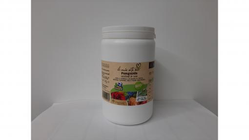 Lecitina di soia kg.1
