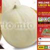 Piantine in pack Melone liscio varietà Bacir F1