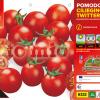 Piantine in pack Pomodoro ciliegia tipo Pachino varietà Twitter F1