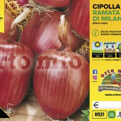 Piantine in pack Cipolla rossa ramata di Milano