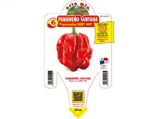 Peperoncino Panameno Santana - vaso 14